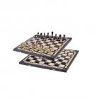Шахматы 2в1